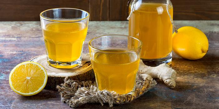 Как хранить чайный гриб: полезные советы